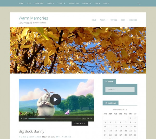 Screenshot of the Warm Memories WordPress theme