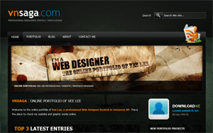 VNSAGA: Professional Website and Graphics Designer